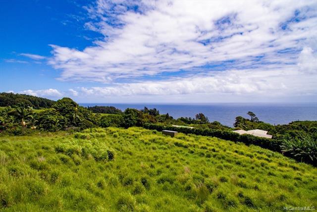 Photo of home for sale at 36-3326 KUWILI LANI Place, Laupahoehoe HI
