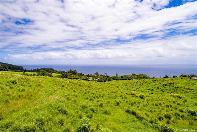 Photo of home for sale at 36-3358 KUWILI LANI Place, Laupahoehoe HI