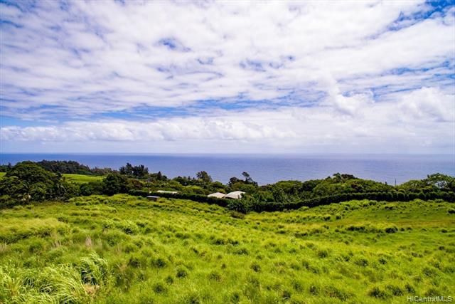 Photo of home for sale at 36-3348 KUWILI LANI Place, Laupahoehoe HI