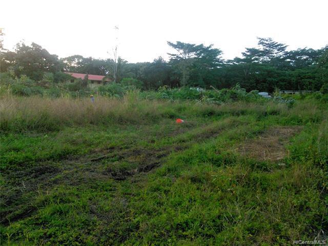Photo of home for sale at 0 Kahakai Boulevard, Pahoa HI