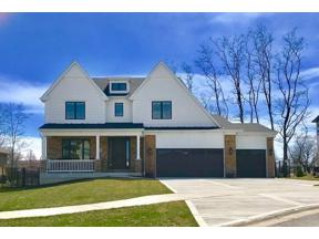 Property for sale at 10051 El Cameno Real Drive, Orland Park,  Illinois 60462