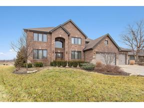 Property for sale at 11046 Garrett Drive, Orland Park,  Illinois 60467