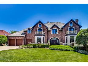 Property for sale at 10603 Misty Hill Road, Orland Park,  Illinois 60462