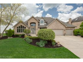 Property for sale at 10845 Fawn Trail Drive, Orland Park,  Illinois 60467
