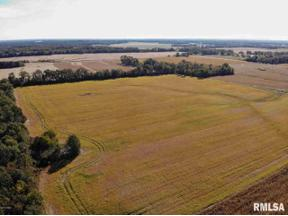 Property for sale at 000 Oak Road, Texico, Illinois 62889