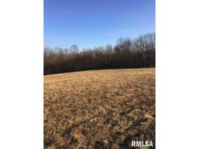 Property for sale at 19976 E Pinecone Road, Bluford, Illinois 62814