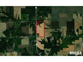 Property for sale at 000 State Route 29, Springfield,  Illinois 62629