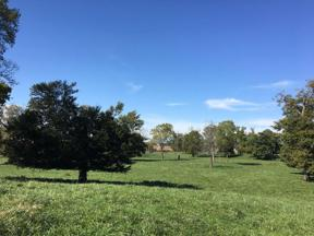 Property for sale at 0 State Road 252, Edinburgh,  Indiana 46124