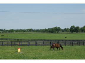Property for sale at 913 Aiken Road, Versailles,  Kentucky 40383