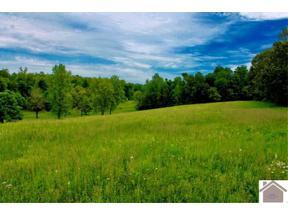 Property for sale at 791 Ditney Rd, Salem,  KY 42078