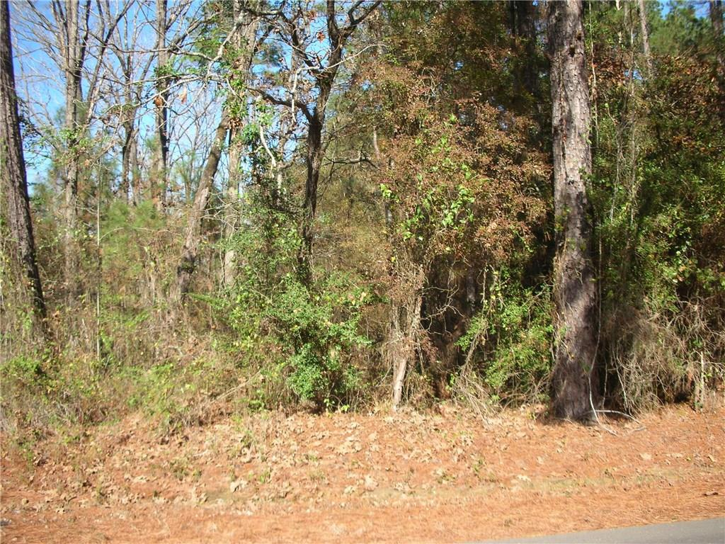 Photo of home for sale at LUMAS Road, DeRidder LA