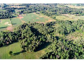 Property for sale at VL W Stevenson Lake Rd, Farwell,  Michigan 48622