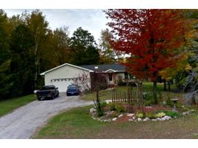 Property for sale at 6609 N Swede Road, Rhodes,  Michigan 48652