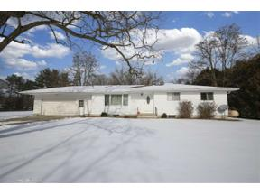 Property for sale at 271 E Baker Rd, Hope,  Michigan 48628