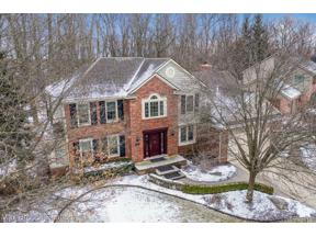 Property for sale at 45627 White Pines DR, Novi,  Michigan 4