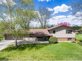 Property for sale at 316 7th Street NW, Buffalo Lake,  Minnesota 55314