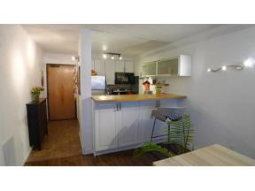 Property for sale at 1920 S 1st Street Unit: 1508, Minneapolis,  Minnesota 55454