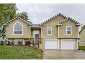 Property for sale at 811 Old Stage Road, Pleasant Hill,  Missouri 64080