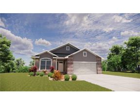 Property for sale at 804 Pampas Street, Pleasant Hill,  Missouri 64080