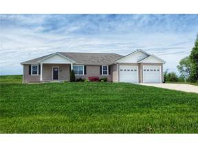 Property for sale at 507 Steer Creek Way, Other,  Missouri 63501