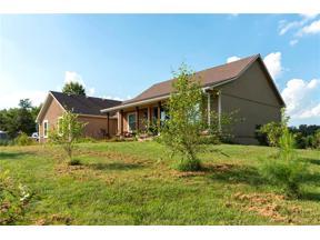 Property for sale at 32802 E 179th Street, Pleasant Hill,  Missouri 64080