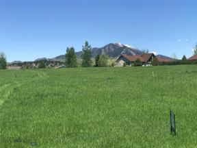 Property for sale at Lot 1 Kermodi, Bozeman,  Montana 59715