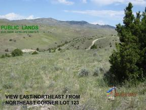 Property for sale at Lot 21-12 Bonanza Trail, Manhattan,  Montana 59741