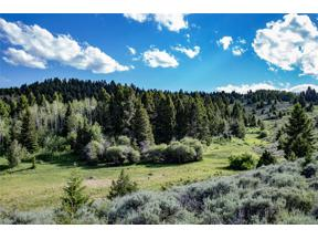 Property for sale at Parcel A Axolotl Lakes Ranch, Ennis,  Montana 59729