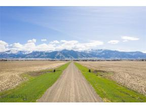 Property for sale at Tract 3 Spain Bridge Ranch Road, Belgrade,  Montana 59714