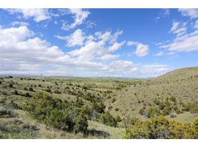Property for sale at TBD Lot 4 Gallatin River Ranch, Manhattan,  Montana 59741