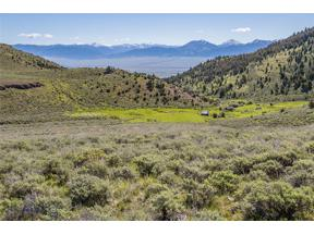 Property for sale at TBD MT-287, Ennis,  Montana 59729
