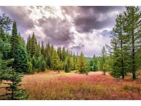 Property for sale at Tract 3, 595 Ousel Falls View Road, Big Sky,  Montana 59716