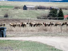 Property for sale at 1875 Maryott, Bozeman,  Montana 59718
