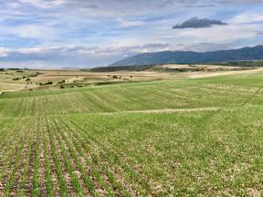 Property for sale at TBD Foster Creek Road, Belgrade,  Montana 59714