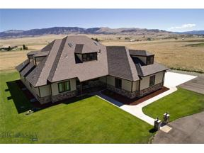 Property for sale at 36 S Centurion Way, Whitehall,  Montana 59759