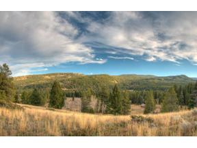 Property for sale at 2033 Ousel Falls Road, Big Sky,  Montana 59716