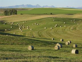 Property for sale at TBD Camp Creek, Amsterdam-Churchill,  Montana 59741