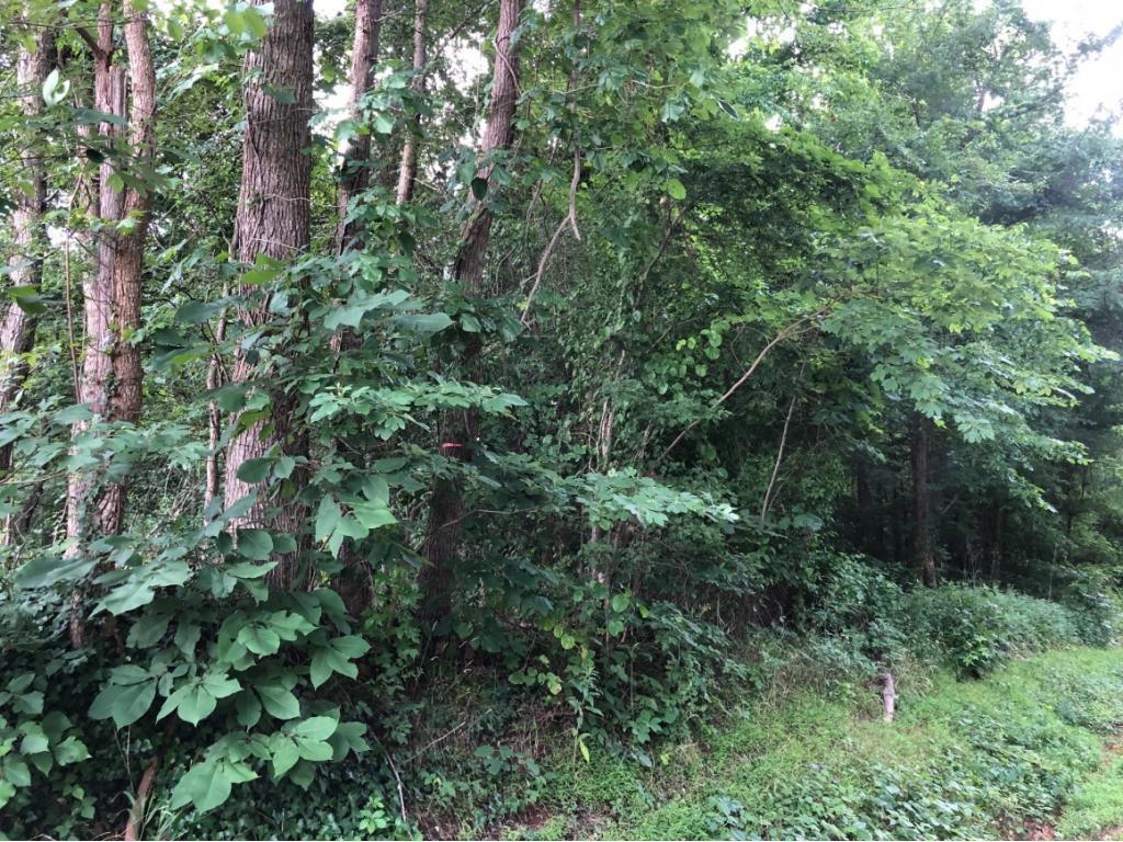 Photo of home for sale at 1820 Efland Cedar Grove Road, Efland NC