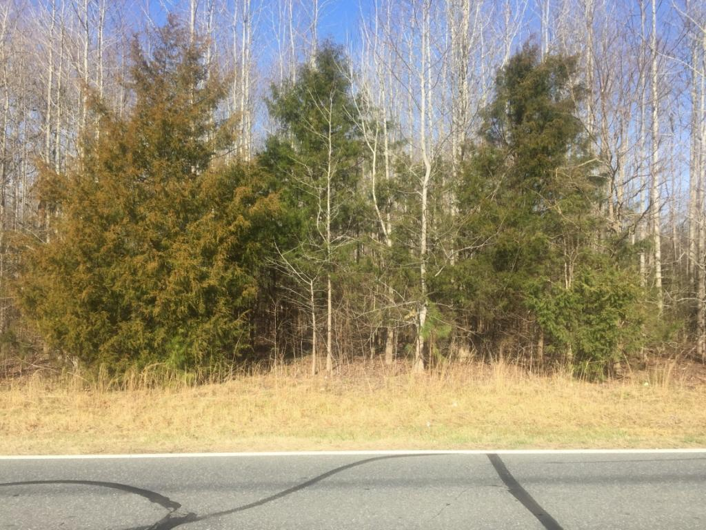 Photo of home for sale at 0 Nc 49 Highway S, Liberty NC