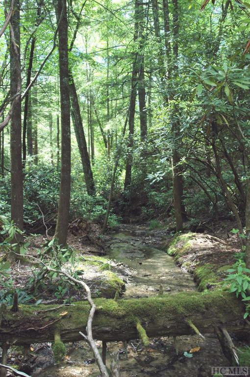 Photo of home for sale at Lot 2B Fly Fishing Lane, Cashiers NC