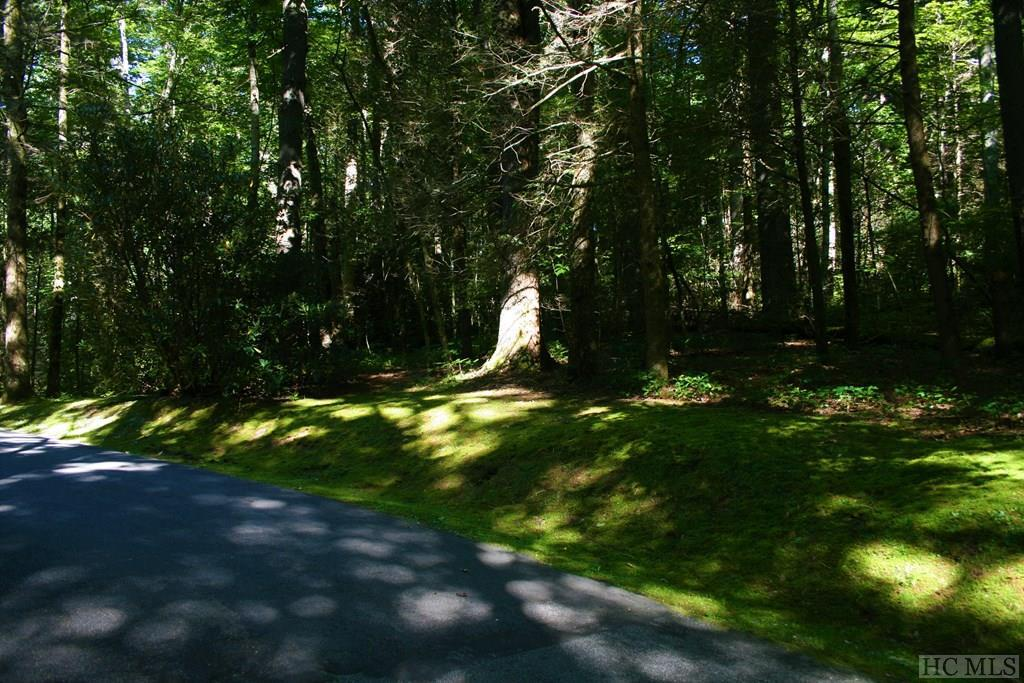 Photo of home for sale at N52 Chimney Top Tr., Cashiers NC