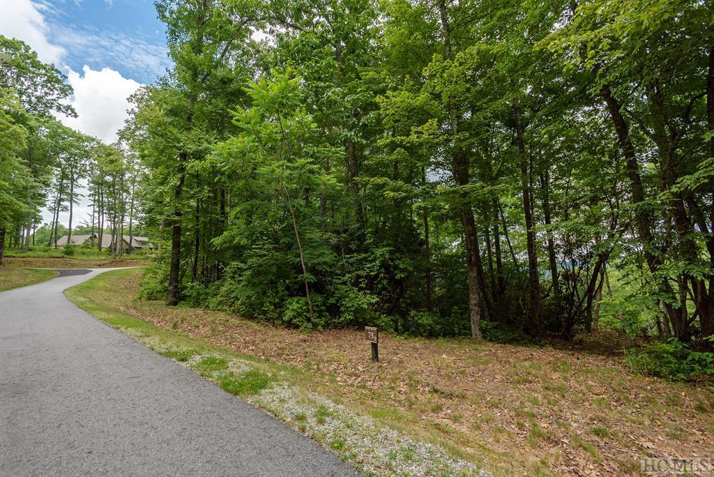 Photo of home for sale at Lot 75 Firesong Lane, Glenville NC