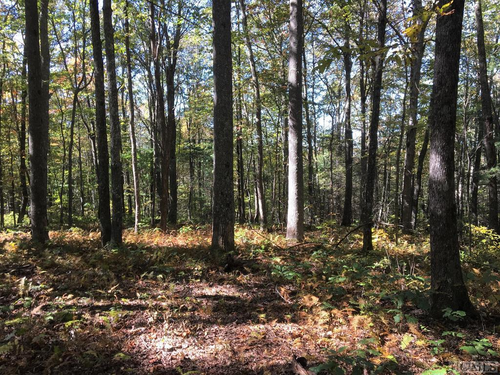 Photo of home for sale at Lot 68D Rye Mountain Drive, Glenville NC