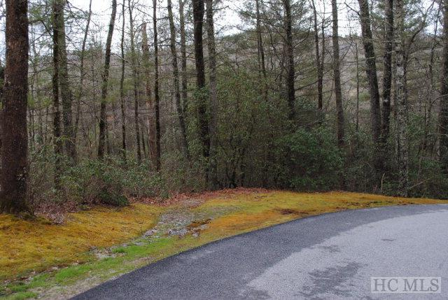 Photo of home for sale at Lot S-10 Cherokee Trace, Cashiers NC