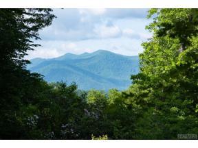 Property for sale at 303 Leafstone Circle, Sylva,  North Carolina 28779