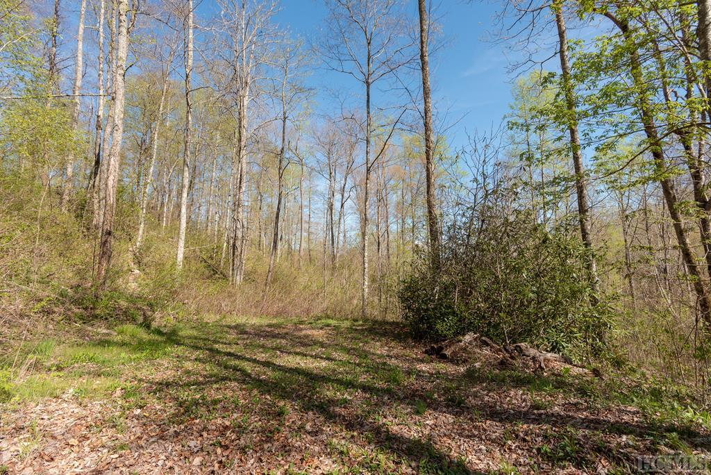 Photo of home for sale at Lot 41 Sims Valley Road, Glenville NC
