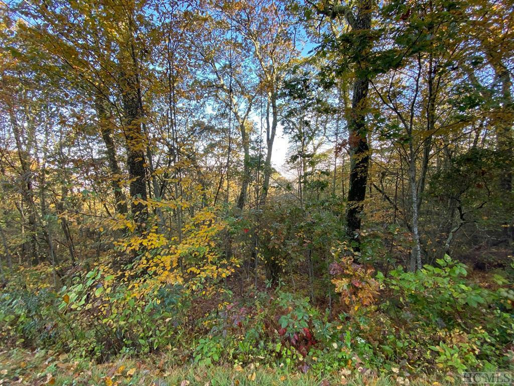 Photo of home for sale at Lot 14B Catspaw Road, Cullowhee NC