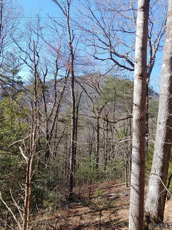Photo of home for sale at 00 Whiteside Cove Road, Cashiers NC