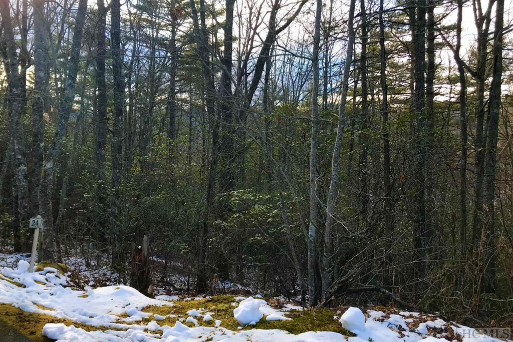 Photo of home for sale at Lot 24 Wildberry Lane, Cullowhee NC