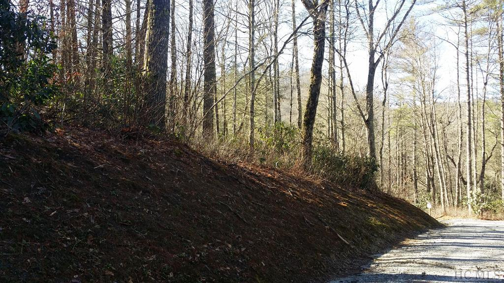 Photo of home for sale at Lot 71 Fishing Village Lane, Cashiers NC